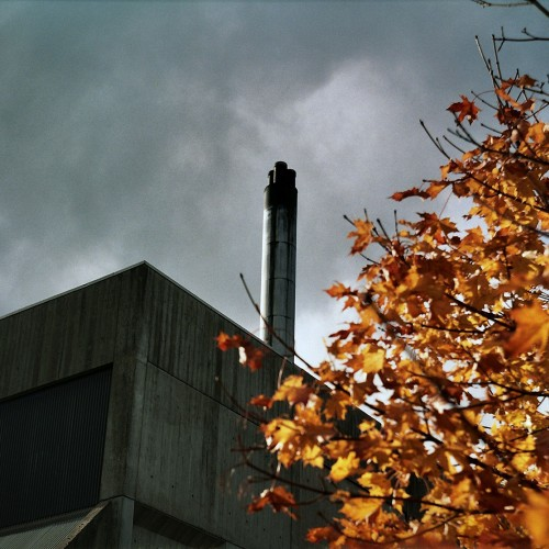 Dingleton Boilerhouse autumn leaves photo CJ Hurst